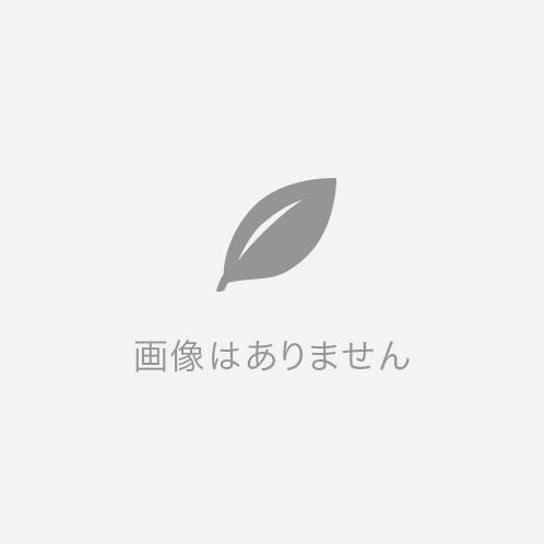 桧(小口)